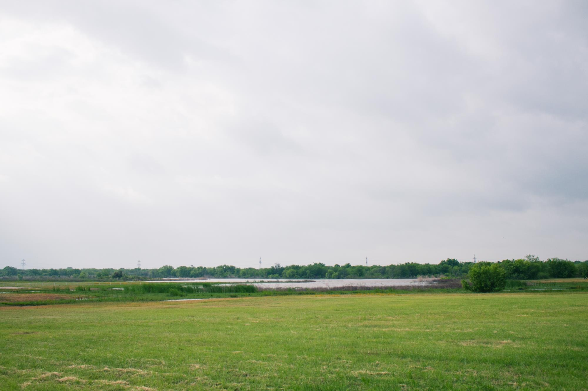 View Overlooking an Empty Grass Field with the Lake Seen Beyond It
