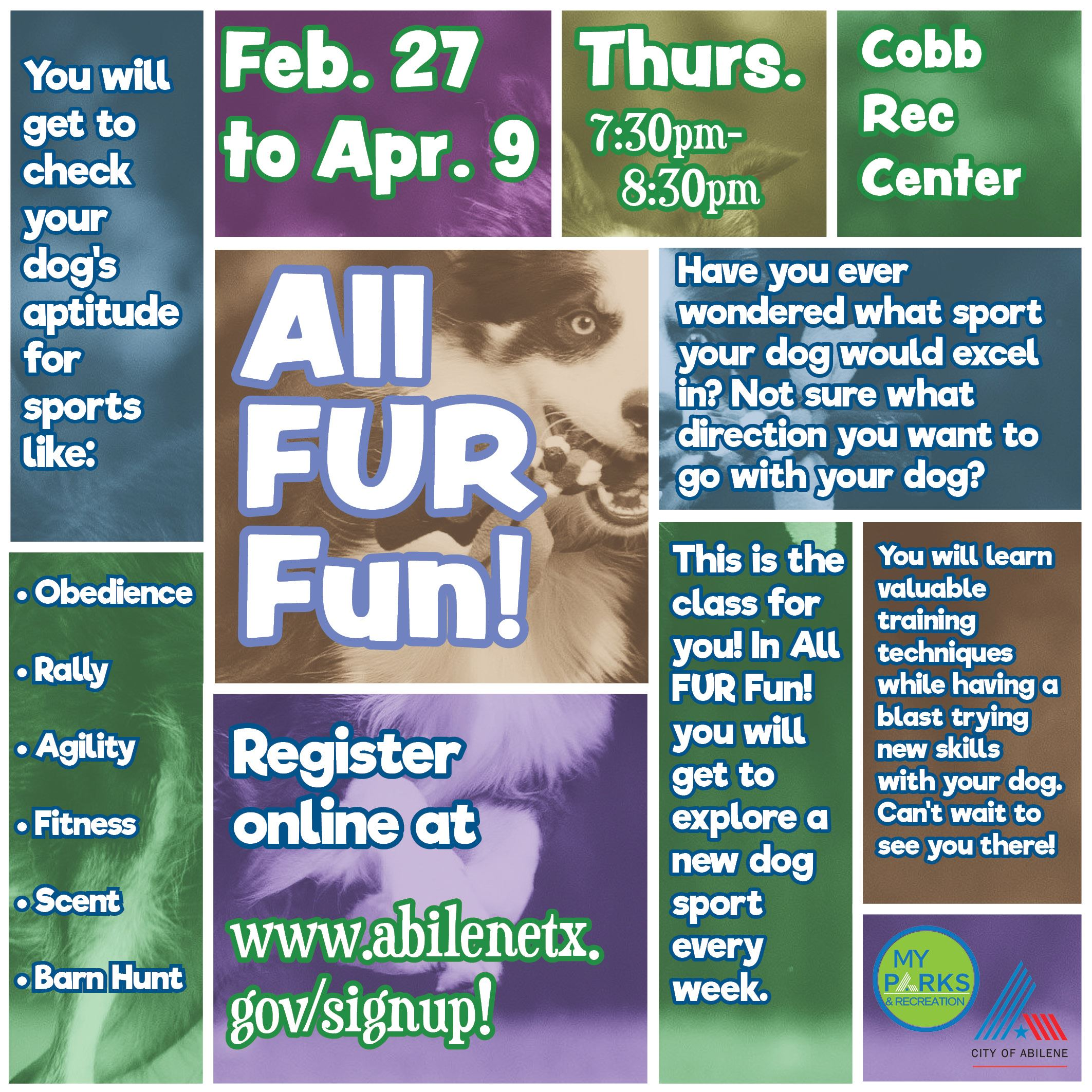 All FUR Fun Dog Class Abilene Texas