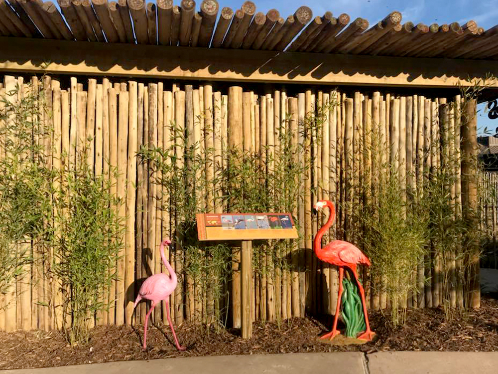 Flamingo Statues by Exhibit Sign
